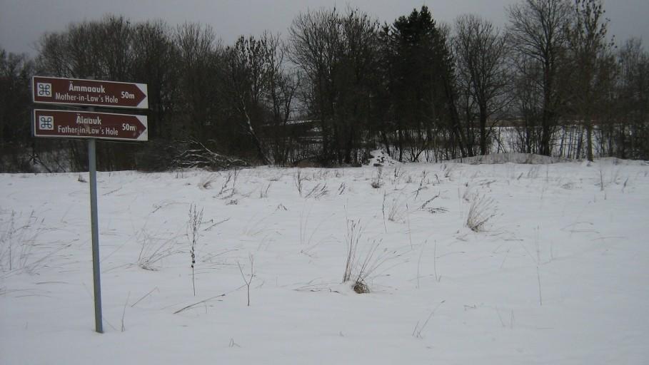 Autor Ulla Kadakas  Kuupäev  28.01.2009