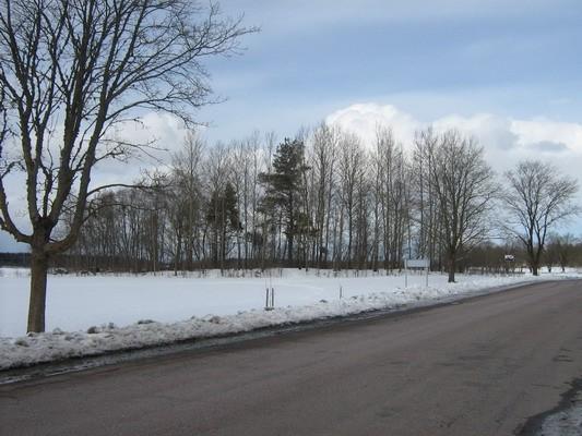 Kivikalme reg nr 10545. Foto: M. Abel, 23.03.2009.