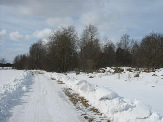 Kalmeväli idast, reg nr 10544. Foto: M. Abel, 23.03.2009.