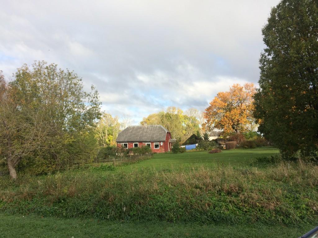 Asulakoht reg-nr 12912, 4.10.2016. Foto: Ingmar Noorlaid