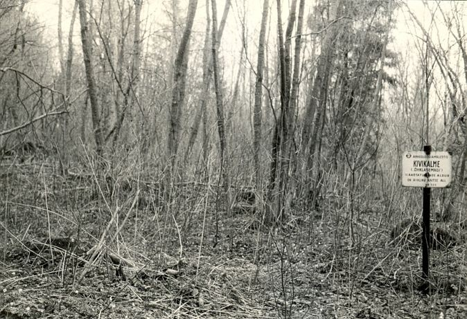 Kivikalme - lõunast  Autor E. Väljal  Kuupäev  05.05.1988