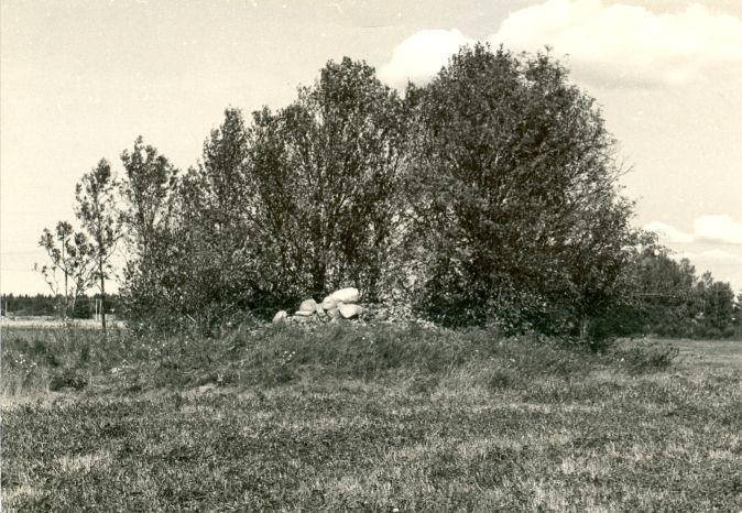 Kivikalme - lõunast  Autor E. Väljal  Kuupäev  03.09.1984
