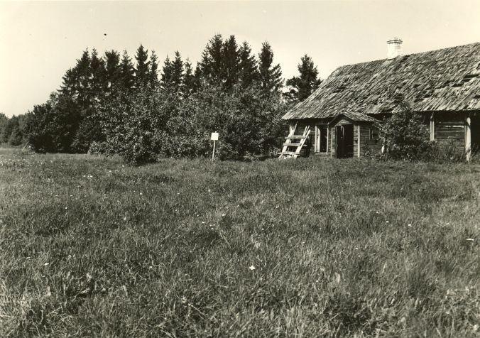 Maa-alune kalmistu. Foto: A. Sillasoo, 24.08.1976.
