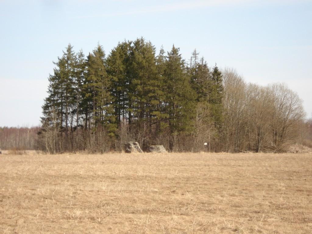 Foto: Karin Vimberg, 23.04.2009.