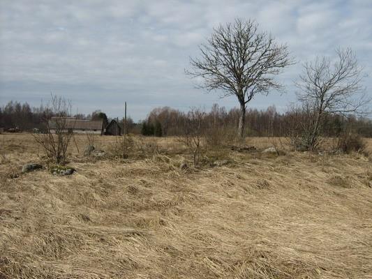 Kivikalme 10582. Foto: M. Abel, 23.04.2009.