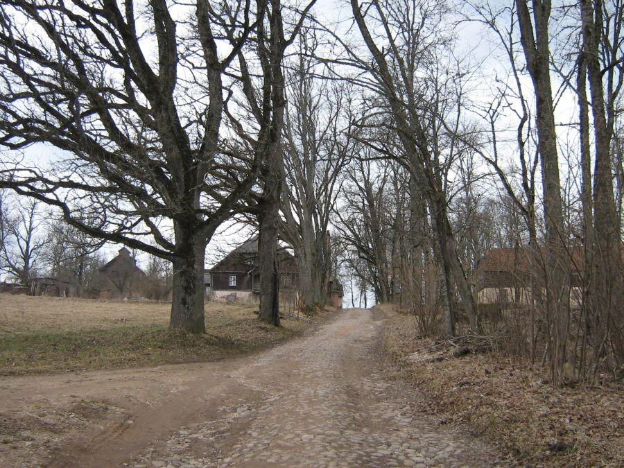 Loodi mõisa munakivitee Autor Anne Kivi  Kuupäev  14.04.2009