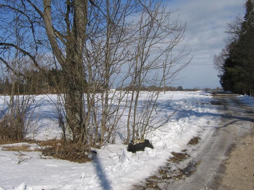 Vaade asula keskelt loodesse.  Autor Ulla Kadakas  Kuupäev  27.03.2009