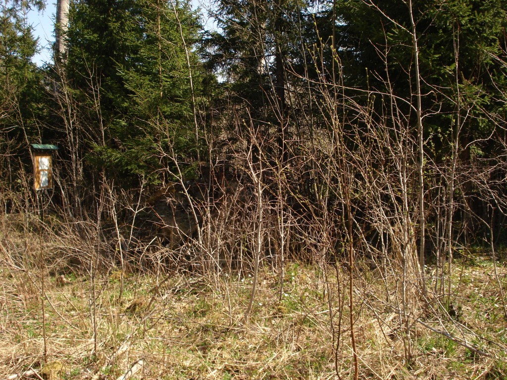 Vaade madalale Akupere mäele. Foto: Karin Vimberg, 04.05.2009.