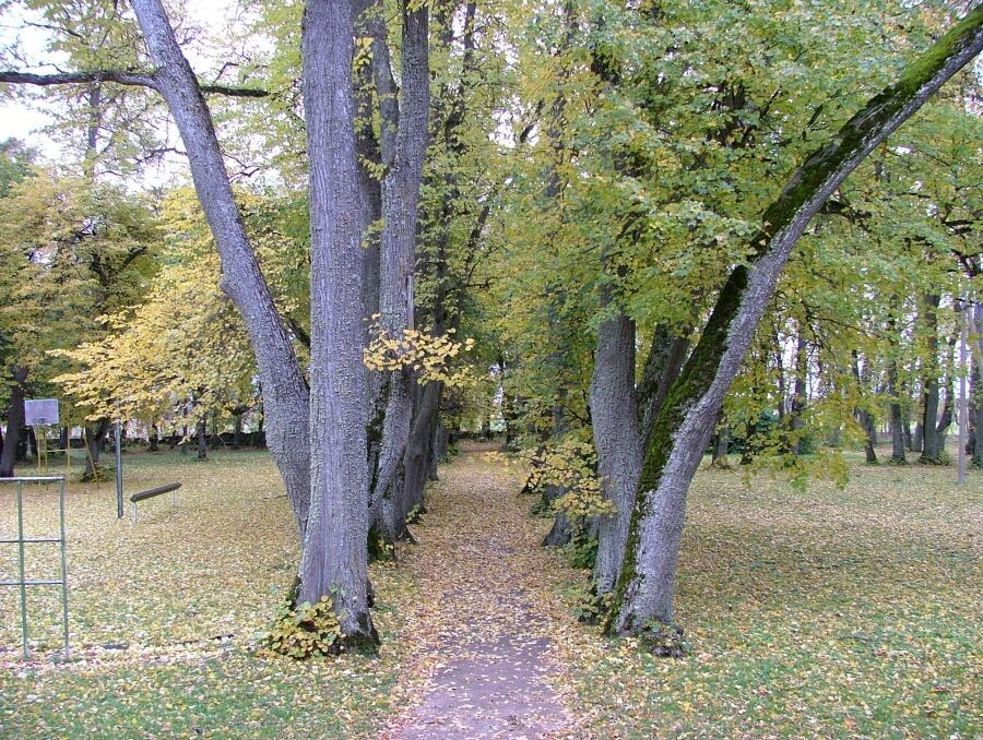 regulaarpark   Autor J.Vali    Kuupäev  13.10.2004