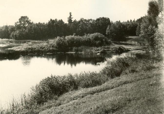 Vaade ohverdamiskohale. Foto: A. Sillasoo, 24.08.1976.