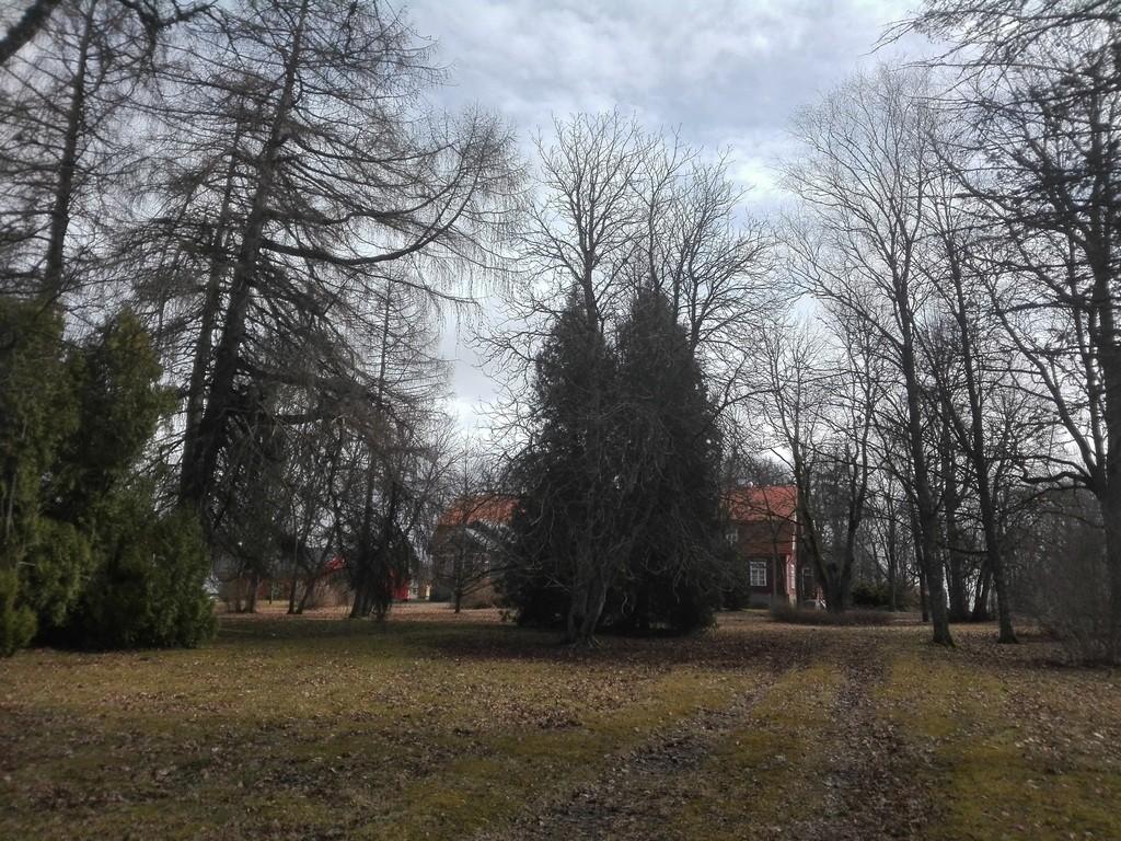 Särevere mõisa park, vaade läänest. Foto: K. Klandorf 11.04.2017.