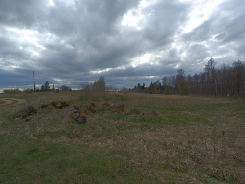 Asulakoht 13338, vaade idast Foto Anne Kivi 06.05.2017