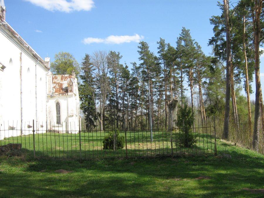 Autor Anne Kivi  Kuupäev  04.05.2009