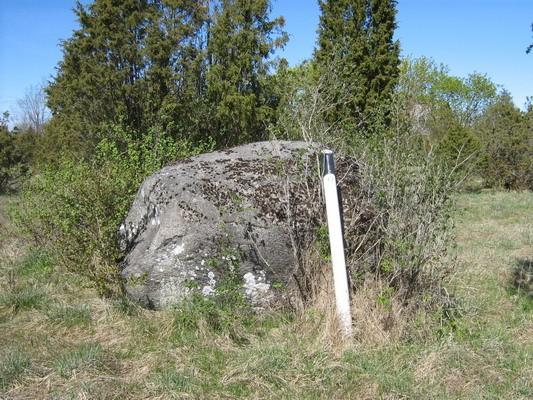 Lohukivi 10696. Foto: M. Abel, 12.05.2009.