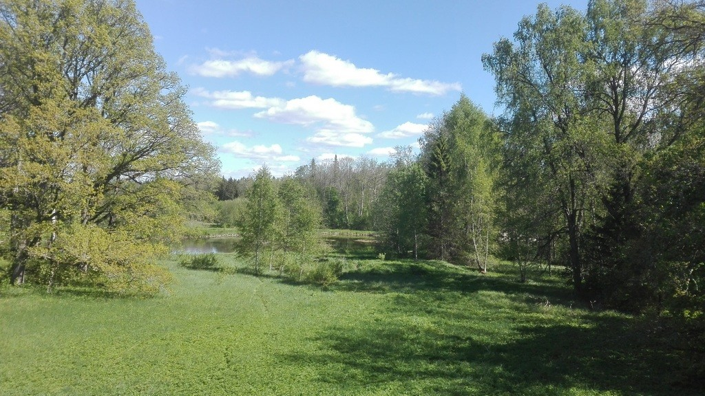 Norra mõisa park, vaade peahoonest kagusse. Foto: K. Klandorf 03.06.2017.