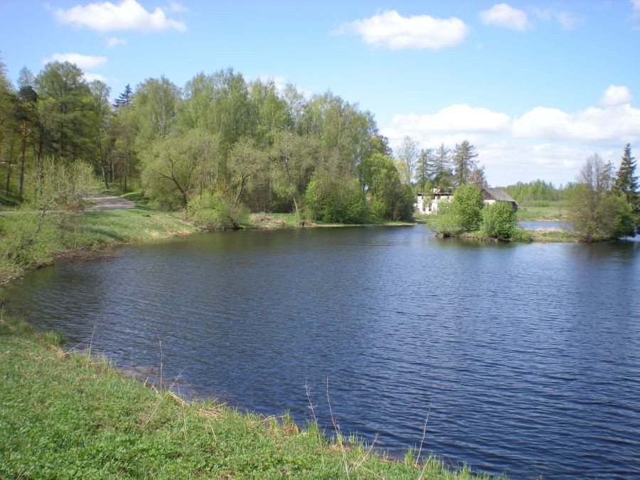 park ja paisjärv  Autor Riina Pau  Kuupäev  08.05.2009
