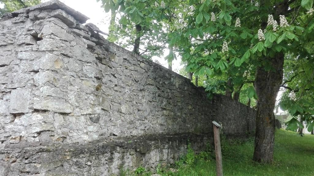 Järva-Jaani kirikuaia piirdemüür kirikuaia lõunaküljel. Foto: K. Klandorf 13.06.2017.