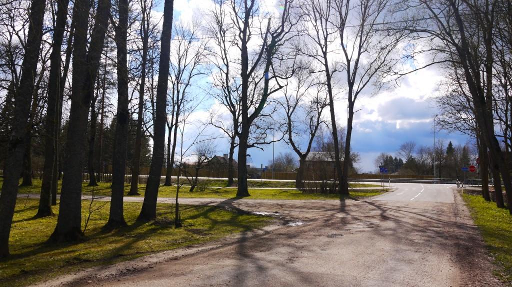 Adavere mõisa park, lõunaosa  Autor: Sille Raidvere Kuupäev: 10.04.2017