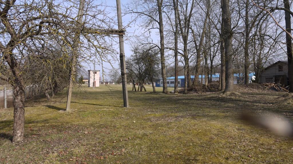 Põltsamaa vana kiriku varemed tee poolt  Aeg: 10.04.2017  Foto: Sille Raidvere