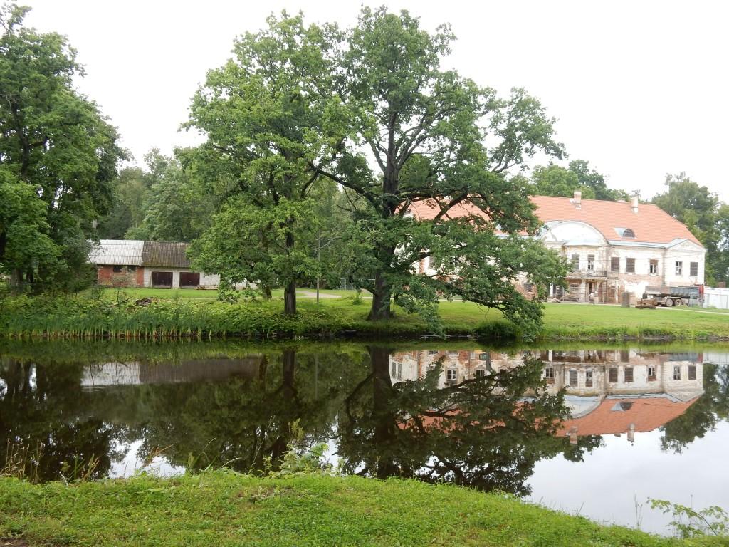 Ahja mõisa park. Foto Silja Konsa, 22.08.2017.a.