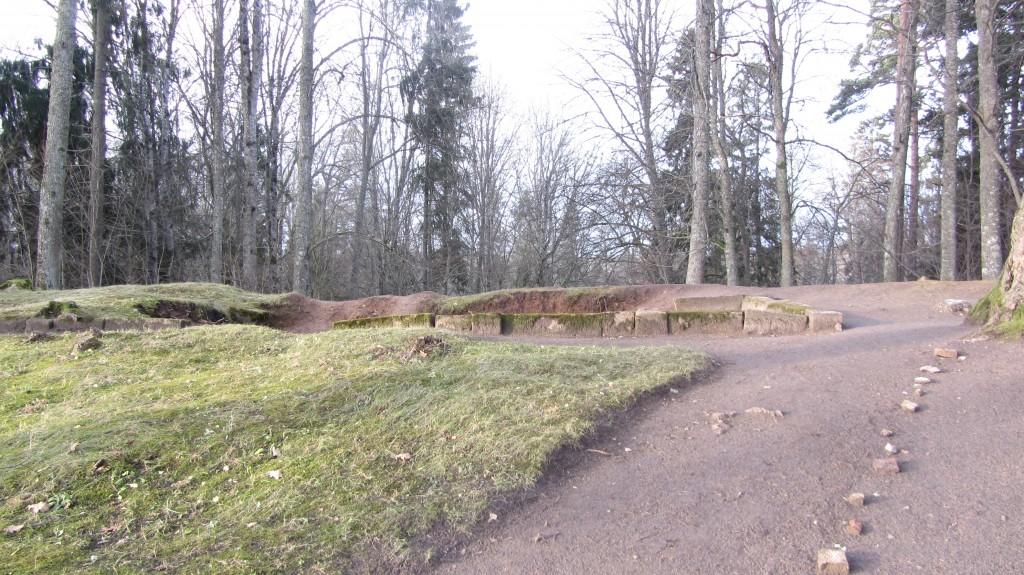 Vaade Rõngu mõisa kalmistule kooli poolt. Näha väikest kividest laotud rajaserva ja kena puhtaks riisutud hauaplatsi. Foto 28.11.2017, A. Kivirüüt.