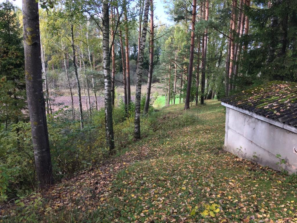 Kalmistu ala, vaade kagust, sissesõiduteelt. Näha nii masuudimahutit ja endise karjääri serva kinnistu edelanurgas. Foto 05.10.2017, A. Kivirüüt.
