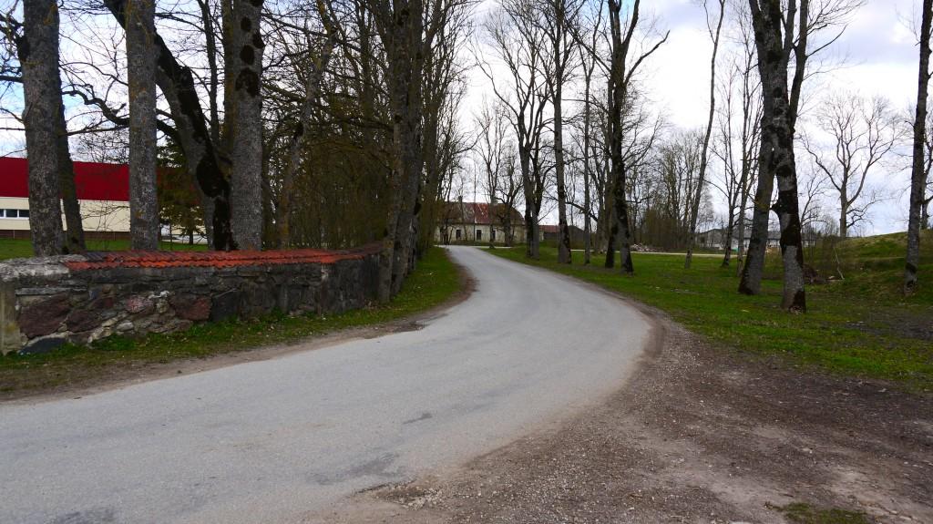 Adavere mõisa pargi piirdemüür, pargi lõunaosa  Autor: Sille Raidvere Kuupäev: 10.04.2017