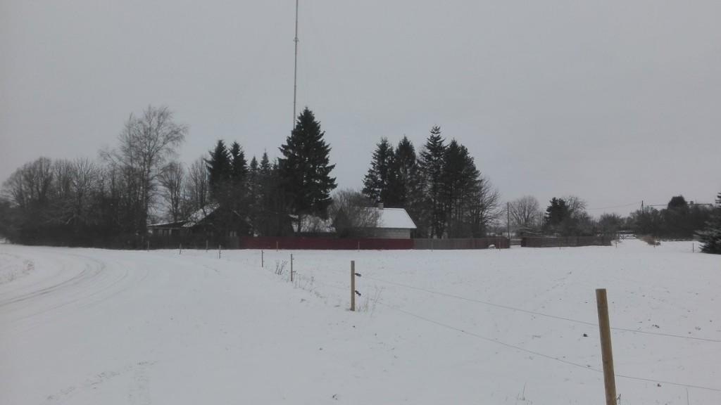 Kaaruka asulakoht, vaade Peetri-Roosna-Alliku teelt Kopli kinnistu suunas (põhja suunas). Foto: K. Klandorf 18.01.2018.