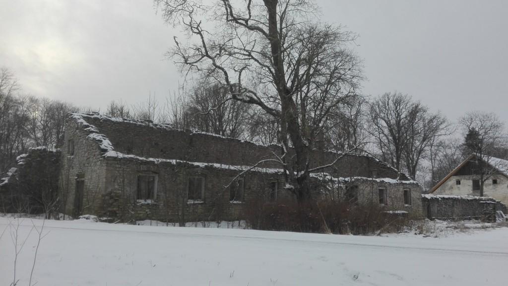 Esna mõisa kasvuhoone varemed, vaade kirdest. Foto: K. Klandorf 18.01.2018.