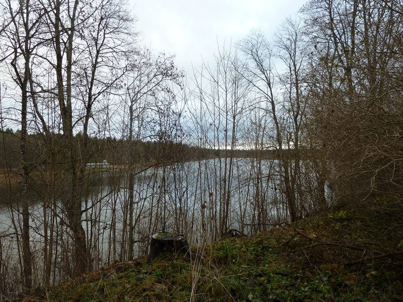 Porkuni mõisa park. Foto: Raili Uustalu 13.11.2017. Kinnikasvanud vaade  järve veepinnale.