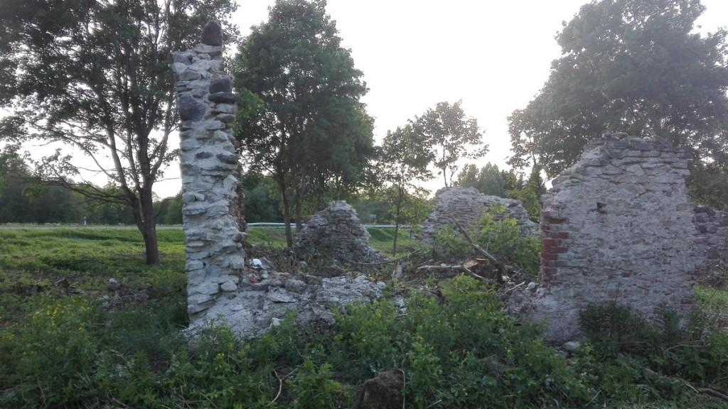 Jändja vesiveski varemed (viltune lõunasein). Foto: K. Klandorf 23.05.2018.
