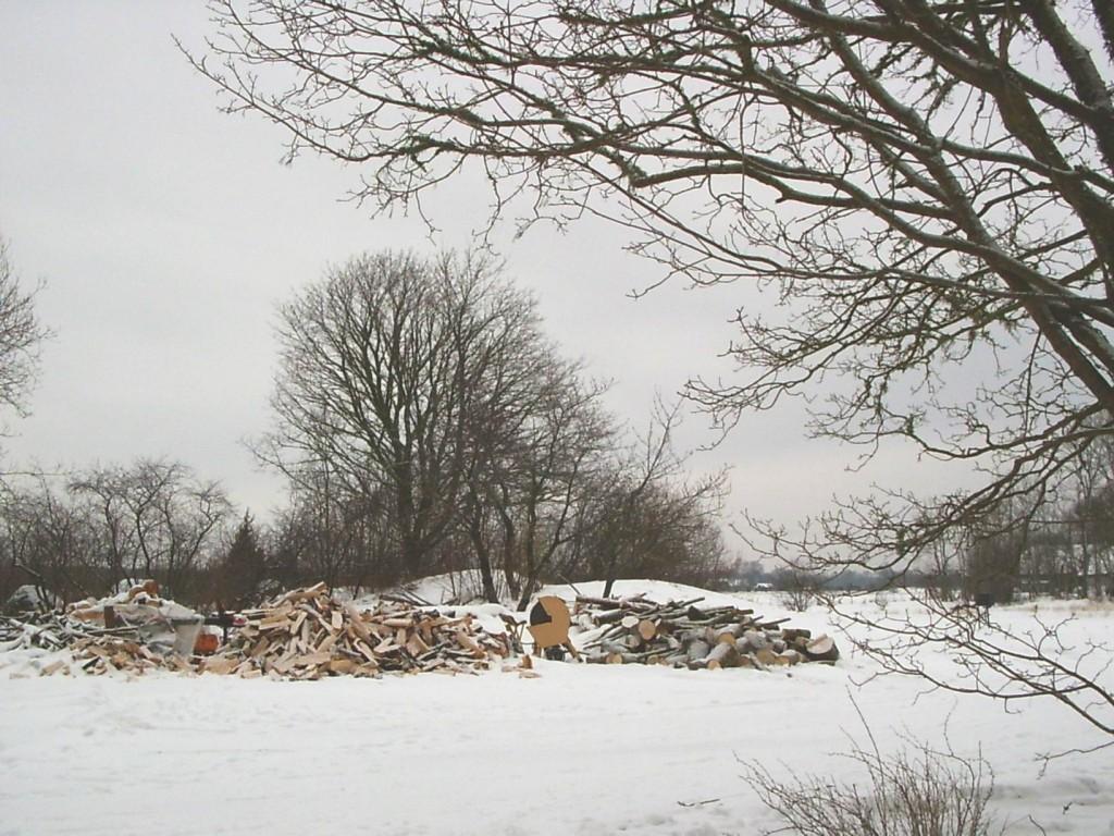 Vaade Ilpla mõisa hoovist talvel. Foto: Lilian Hansar, 19.02.2005.