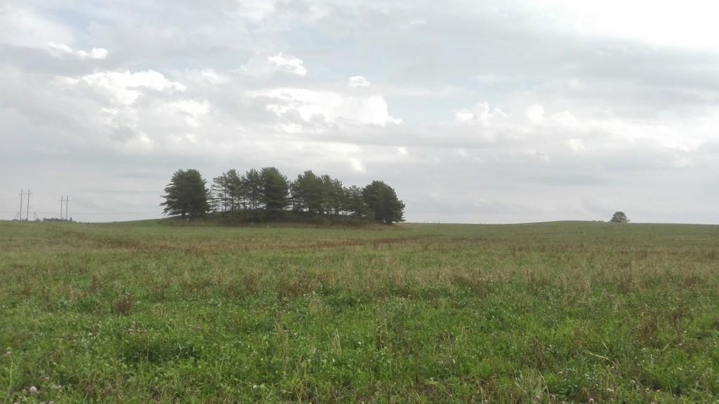 """Ohverdamiskoht """"Nõiamägi"""", vaade mälestisele ja ümbritsevale maastikule loodest. Foto: K. Klandorf 11.09.2018."""