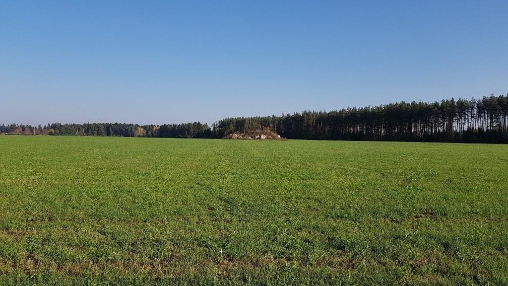 Põllukivihunniku all olev kivikalme, vaade edelast. Foto: M.Abel, kp 16.10.18