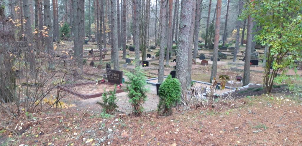 Vaade kalmistule. Foto: K. Tael 6.11.2018