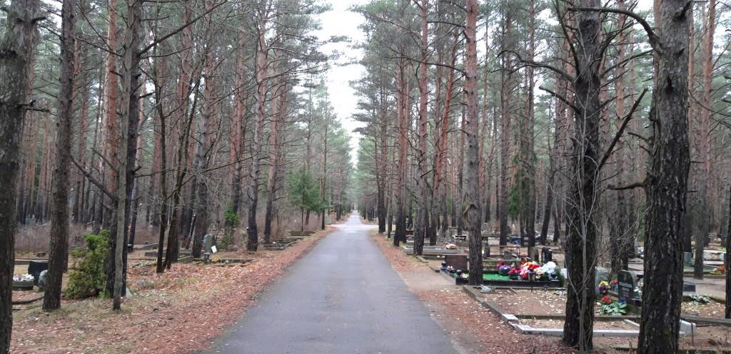 Vaade kalmistule. Foto: K. Tael 15.11.2018