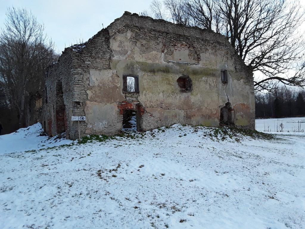 Udriku mõisa viinavabriku varemed. Foto: Raili uustalu 07.12.2018. Vaade varemetele läänest.
