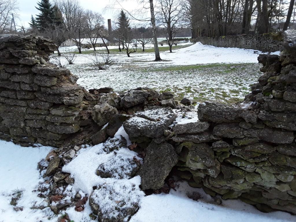 Udriku mõisa piirdemüürid. Foto: Raili Uustalu 07.12.2018. Varing piirdemüüris.