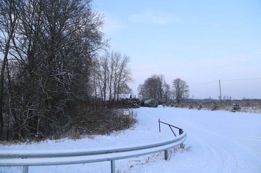 Vaade lõunast mälestise tähisele. Foto: Helena Kaldre 19.12.18