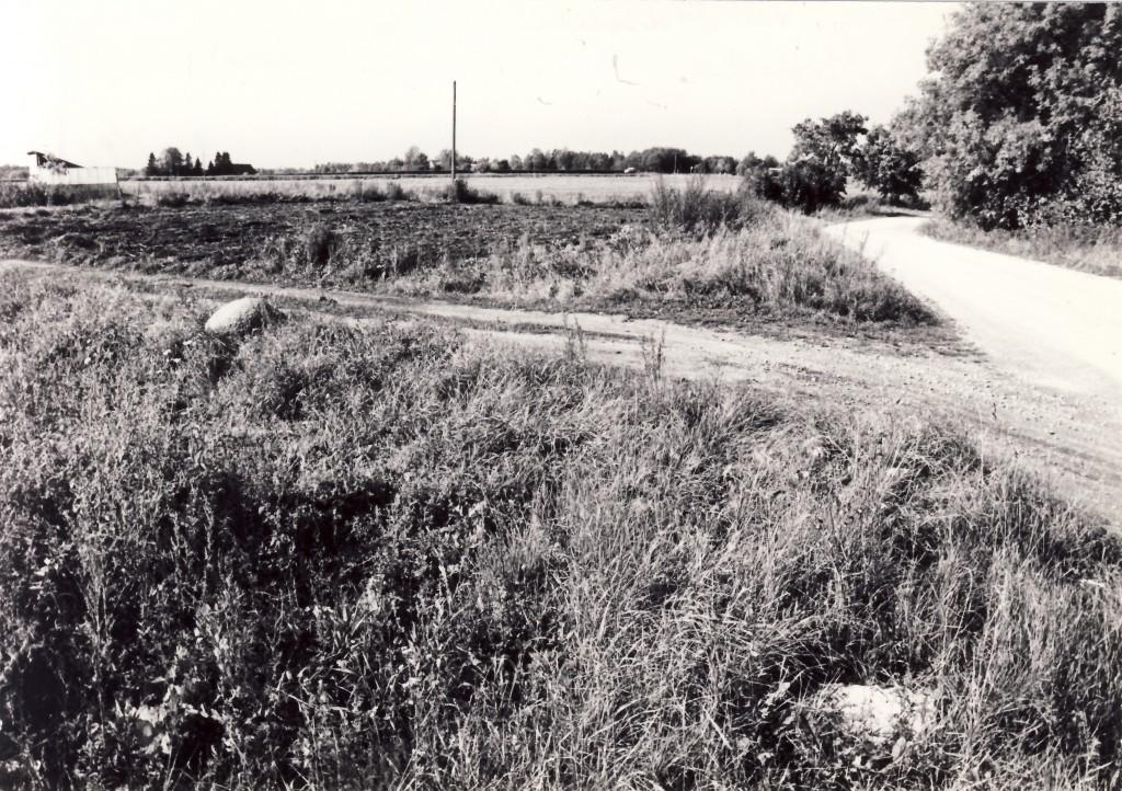 Keldrimäe asulakoht. Foto: Enno Väljal, 17.09.1984