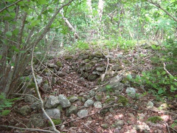 Pidula reg nr 12352. Foto: M. Koppel, 20.07.2009.