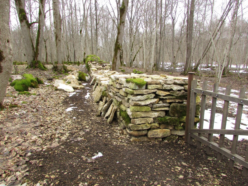Osaliselt taastatud kalmistu kiviaed. Foto: Keidi Saks, 20.02.2019