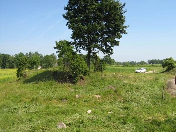 Kabeliase. Foto: M. Koppel, 2009.