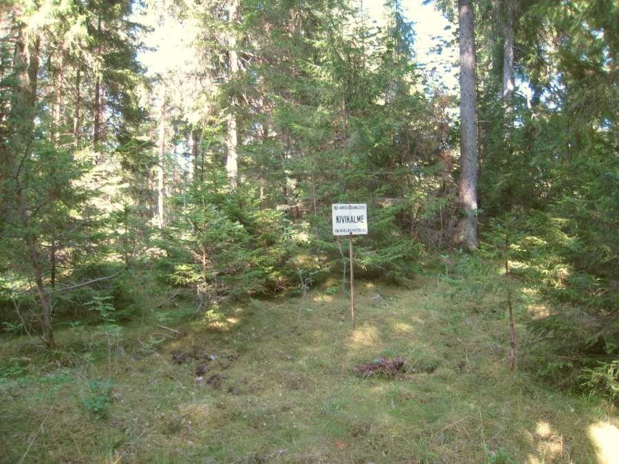 Kivikalme paikneb kuusemetsas, maanteest 50 m kaugusel. Foto: M. Koppel, 06.08.2009.