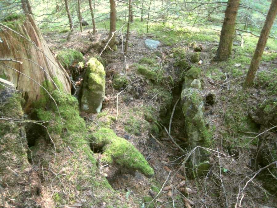 Kalme avatud kivikirst on vooderdatud külgedelt suurte paekiviplaatidega. Foto: M. Koppel, 06.08.2009.