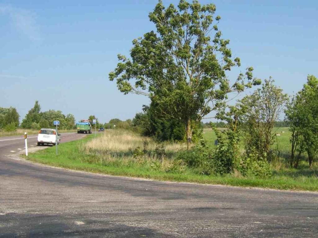 Üldvaade Saareküla teeristile, kultusekivid asuvad kurvi sees põllulservas. Foto: M. Koppel, 2009.