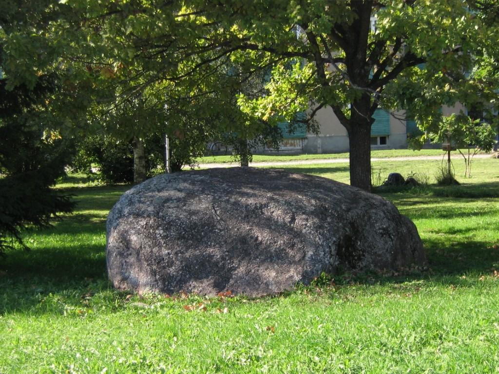 Kultusekivi, reg nr 10189. Foto: I. Raudvassar, 15.09.2006.