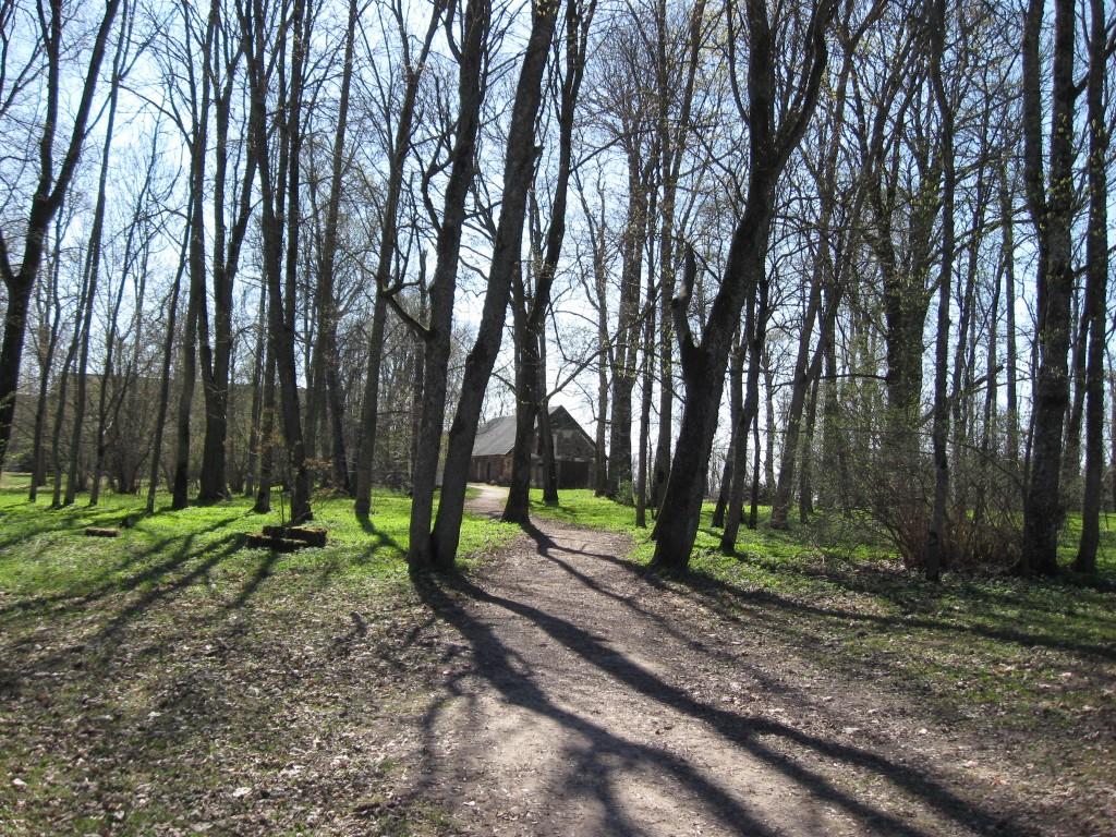 Park mais 2009