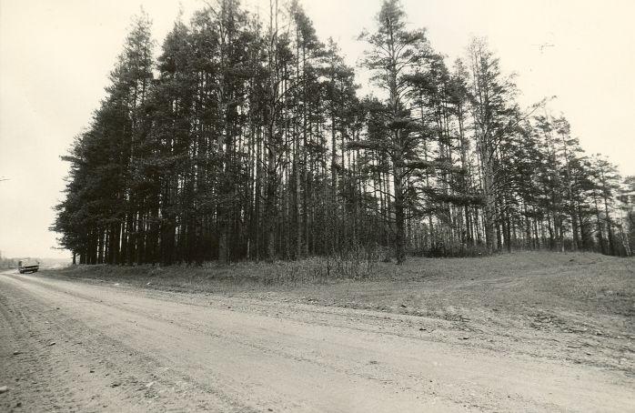 Maa-alune kalmistu - lõunast. Foto: M. Pakler, 07.05.1987.