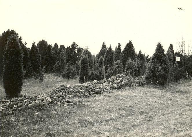 Kivikalme - idast. Foto: E. Väljal, 04.05.1983.